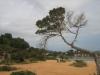 bilder_2006-279