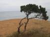 bilder_2006-286
